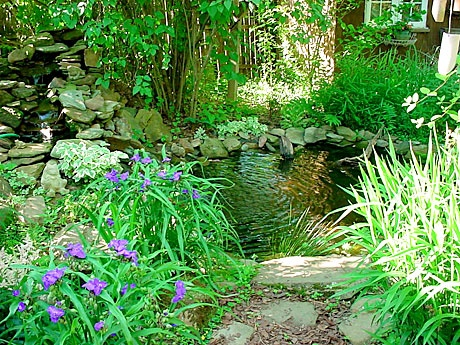 Nice small natural looking pond for the garden pinterest for Small natural pond