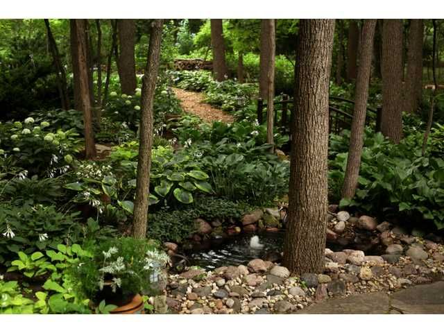 Landscaping Mulch Regina : How to landscape by backyard forest google search