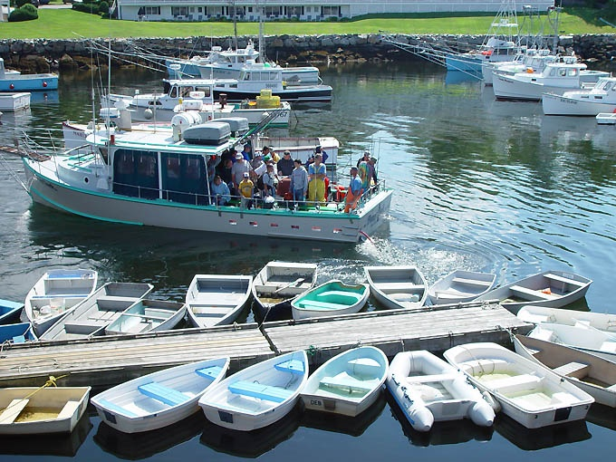 Pin by christine lites on maine pinterest for Deep sea fishing maine