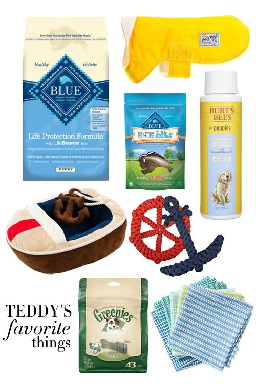 @collegeprepster share's her dog, Teddy's, favorite things including the #MarthaStewartPets #Nautical Boat Bed. #pettips #petcare #petproducts