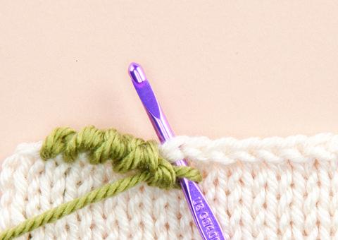 Reverse Single Crochet : http://www.crochettoday.com/how-to/how-work-reverse-single-crochet