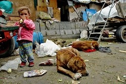 POVERTY AT LARGE : A DARK SPOT IN HUMANITY