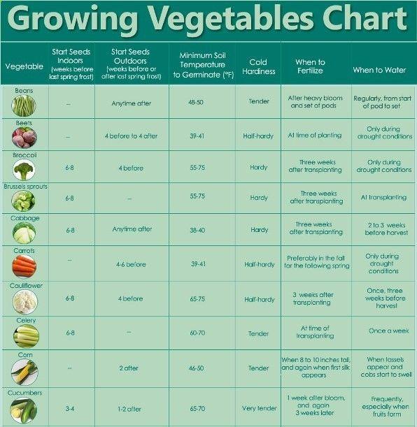 Vegetable chart gardening pinterest for Vegetable gardening guide