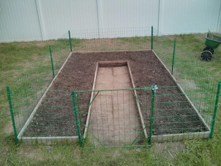 garden with chicken wire fence and gate yard pinterest