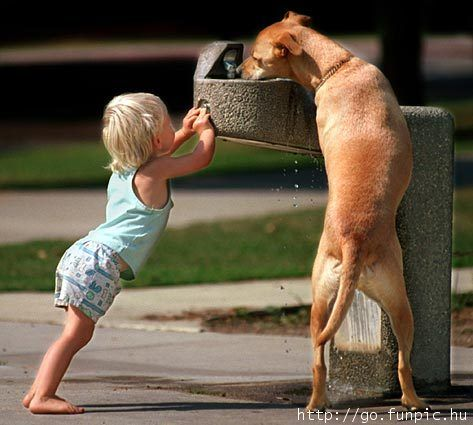 So sweet, even kids understand the meaning of helping animals.
