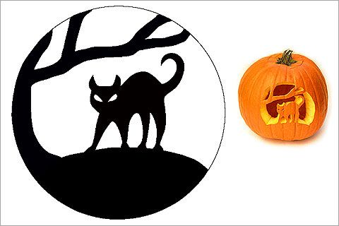 Pumpkin Stencils Pumpkin Painting Party Pinterest