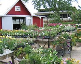 garden patch farms farm living pinterest