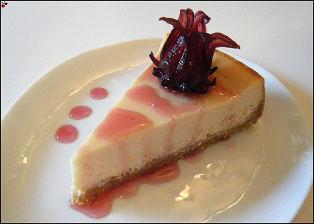 Blood Orange Cheesecake with Macadamia Vanilla Crust. This is ...