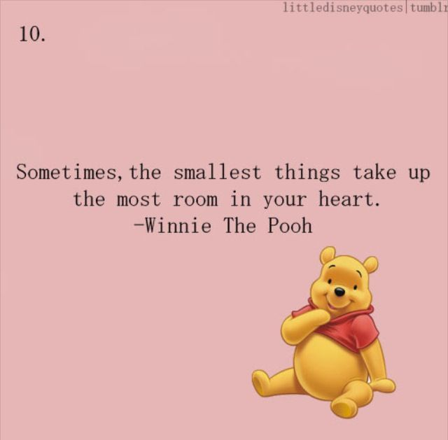 The Tao Of Pooh Summary and Study Guide