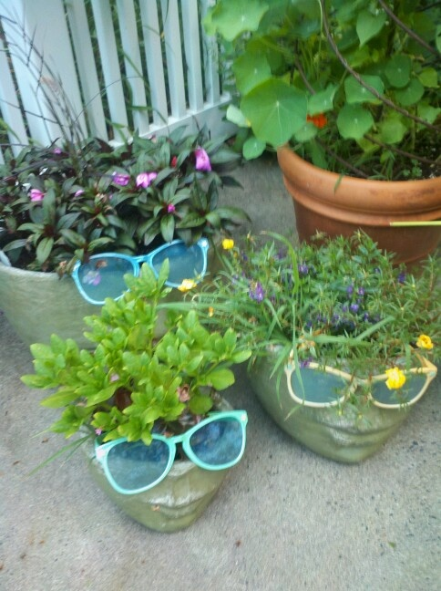 Flower Pot Faces Quirkiness O O Pinterest