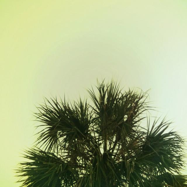 Isle of Palms