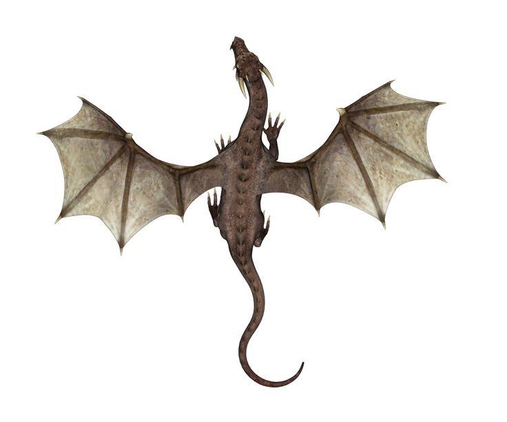 1000+ images about Dragon on Pinterest   Ouroboros tattoo ...