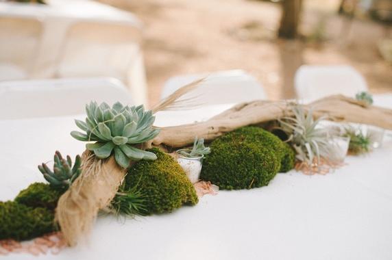 Driftwood centerpiece wild onion ranch wedding pinterest for Driftwood centerpiece