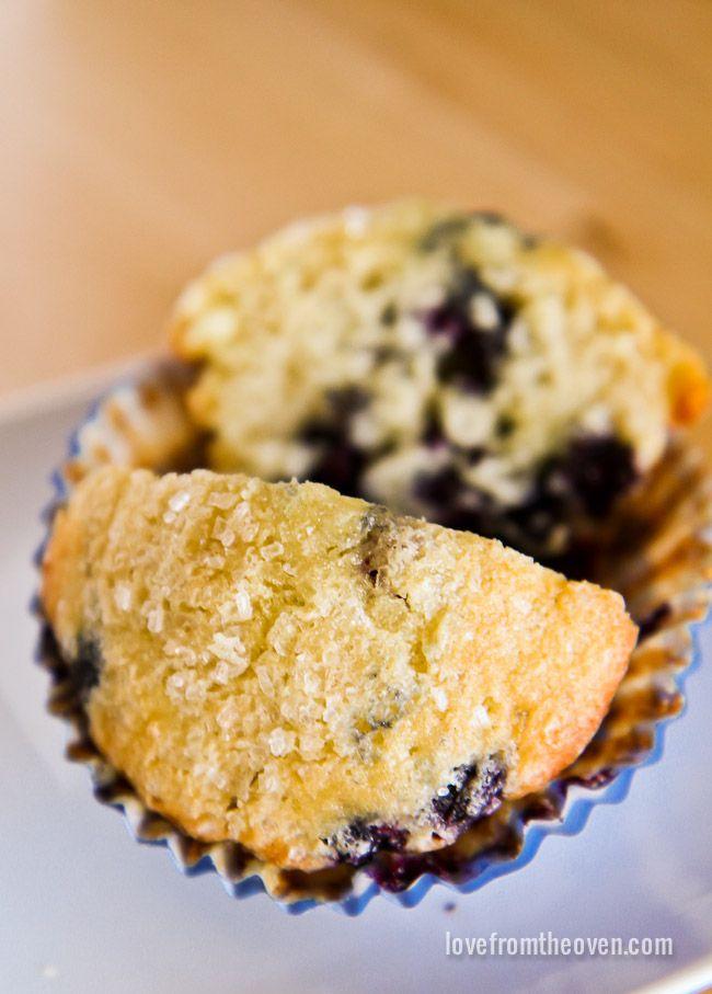 Lemon Blueberry White Chocolate Muffins | Recipe
