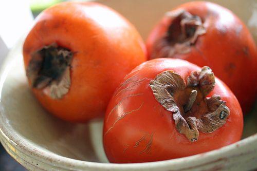 James Beard's Amazing Persimmon Bread | Recipe