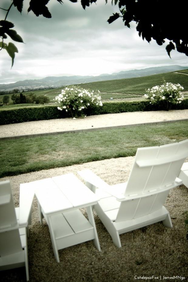 Wine Country (William Hill Wine Estates in Napa)