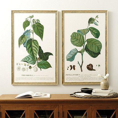 Vert Botanique Framed Art