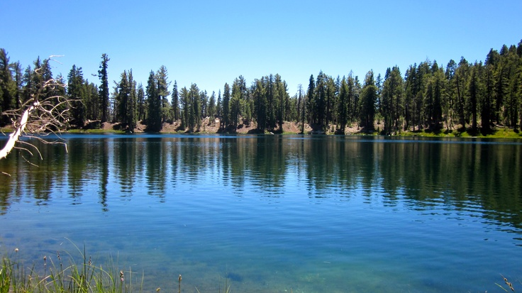 beautiful nellie lake re known for it crystal clear water. Black Bedroom Furniture Sets. Home Design Ideas
