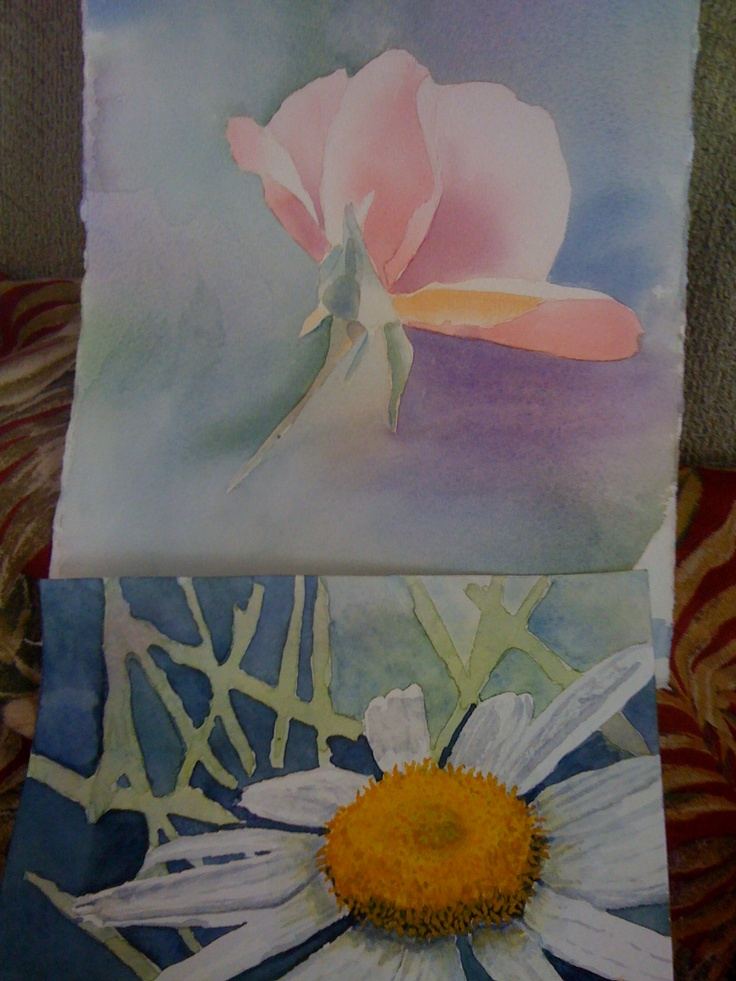 Water color paintings: rose and daisy