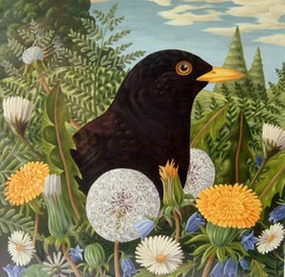 blackbird and dandelions