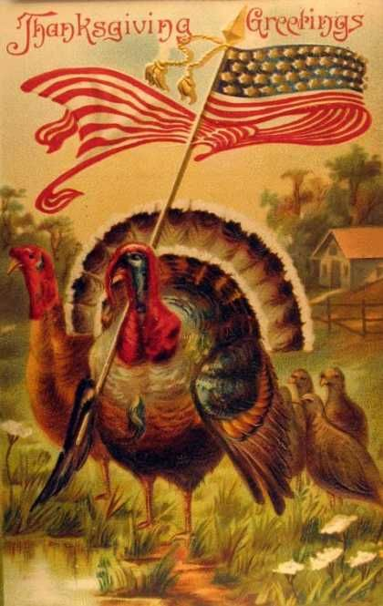 Thanksgiving Greetings!  Love the turkey waving the American flag!  :)