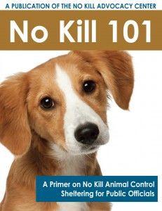 No Kill 101