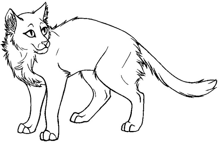 Warrior Cat Coloring Pages #7