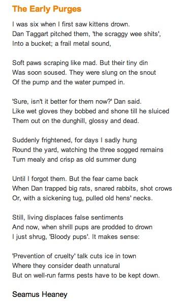 english literature poetry essays