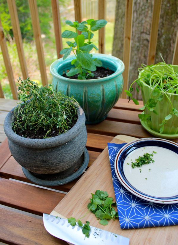 Diy herb container garden spring dig in deep pinterest for Patio herb garden designs containers