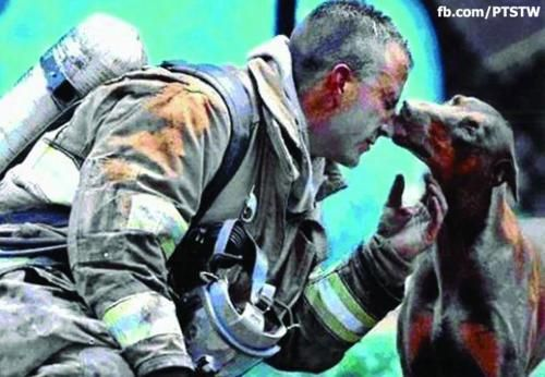 "The story, as I read it:    This photograph shows a red Doberman kissing an exhausted fireman. He had just saved her from a fire in her house, rescuing her by carrying her out of the house into her front yard, while he continued to fight the fire. She is pregnant. The firefighter was afraid of her at first, because he had never been around a Doberman before. When he finally got done putting the fire out, he sat down to catch his breath and rest. A photographer from the Charlotte, North Carolina newspaper, ""The Observer,"" noticed this red Doberman in the distance looking at the fireman. He saw her walking straight toward the fireman and wondered what she was going to do. As he raised his camera, she came up to the tired man who had saved her life and the lives of her babies, and kissed him, and that's when the photographer snapped this shot."