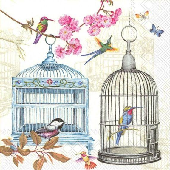 картинки с клетками и птицами