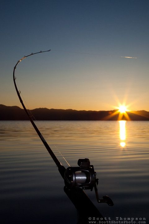 fishing lake tahoe fishing pinterest