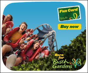 2013 Busch Gardens Discounts Autos Post
