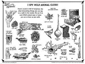 Wilderness Clue Sheet