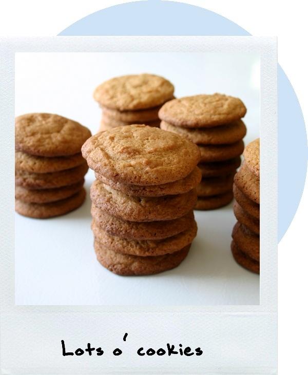 Dulce de Leche Sandwich Cookies   Cookies, Brownies, & Bars   Pintere ...