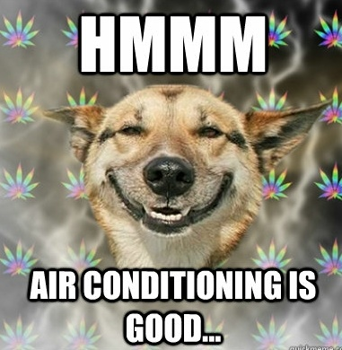 Dog S Love Air Conditioning Too Animals Tips Pinterest