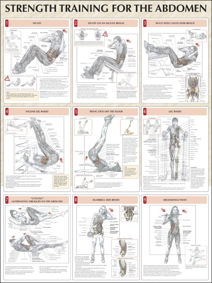 Strength Training Anatomy 3Rd Edition Torrent - parxsonar\'s diary