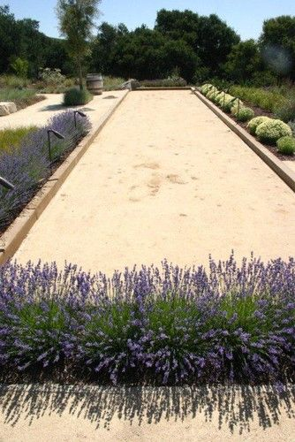 Bocce Ball Court Design, Pictures, Remodel, Decor and Ideas  page 12