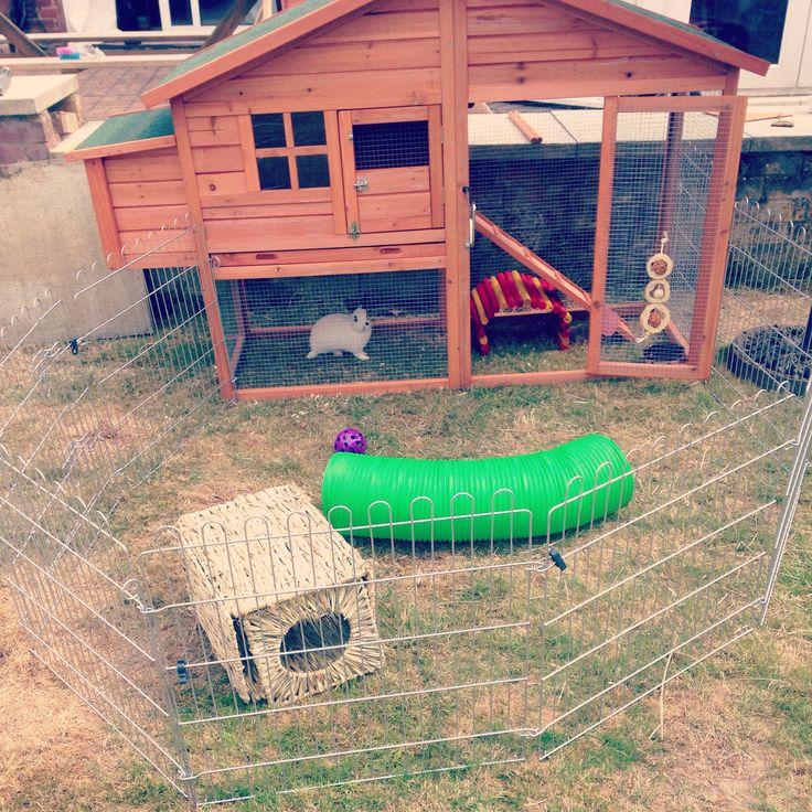 rabbit hutch set up stuff for my babies pinterest