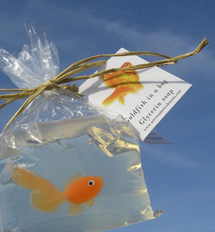 Fish in a bag novelty soap carnival prize fish soaps games for Gold fish game