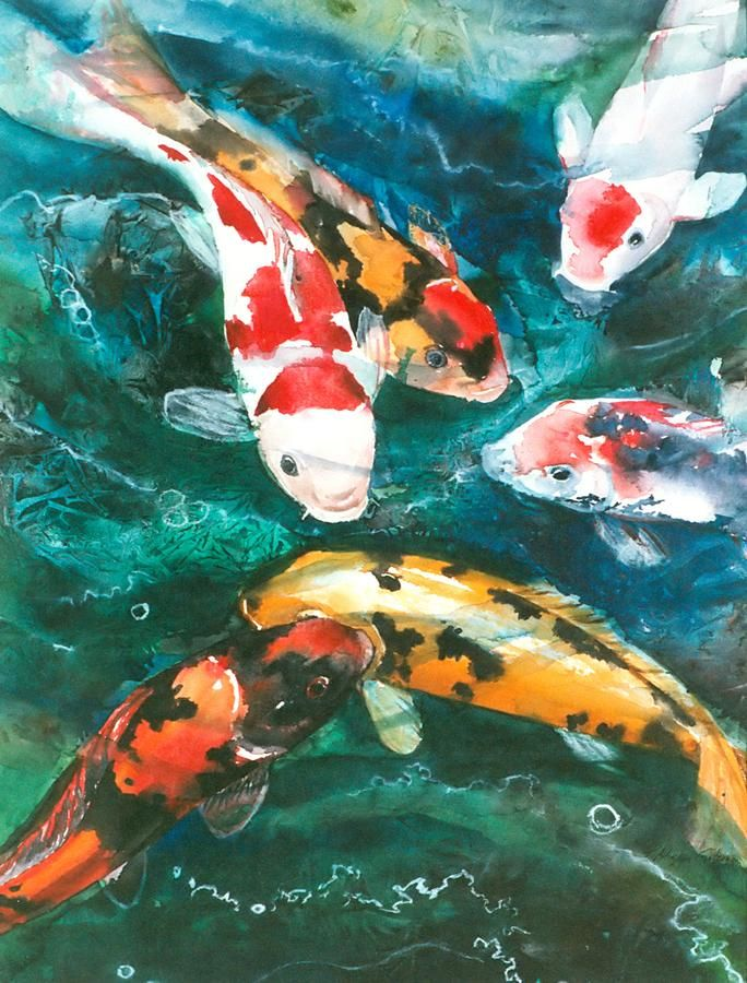 Koi art google search koi pinterest for Koi artwork on canvas