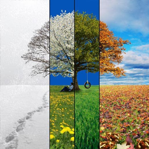 factors determining the different seasons on earth The earth's orbit and the reasons for seasons of the earth causes seasons there are several factors we need to consider the earth at different.