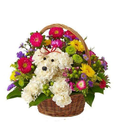 1800flowers a-dog-able basket