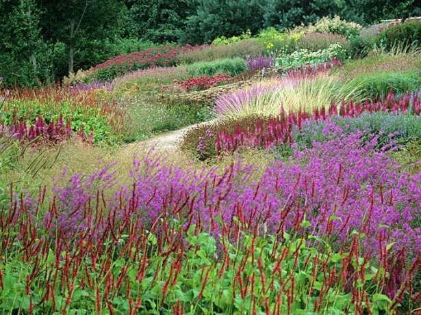 Piet Oudolf Garden Cottage Gardens Pinterest
