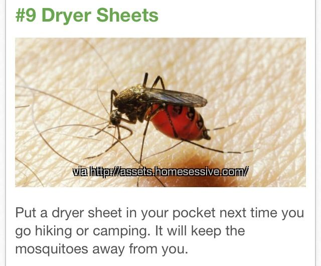 how to keep mosquitoes away apps directories