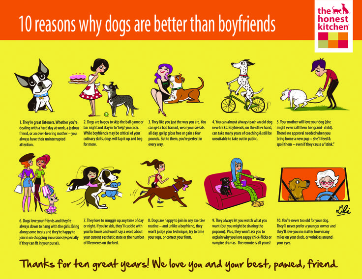 """10 Reasons Why Dogs are better than Boyfriends,"" by Christina Le"