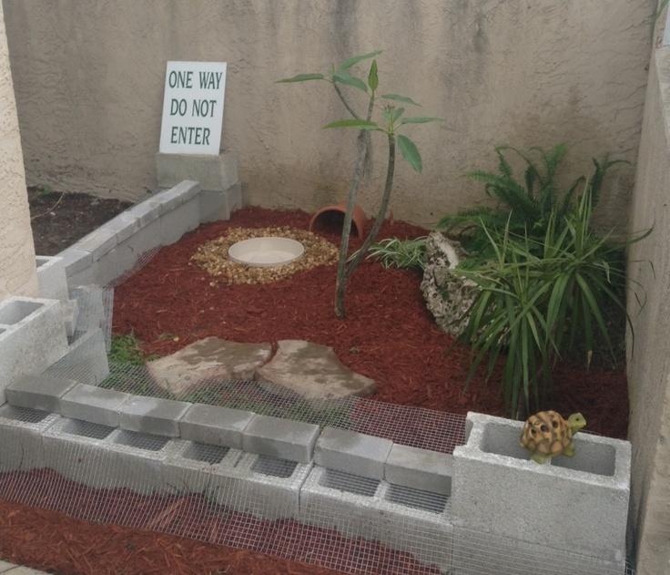My box turtle habitat for tortoises pour les tortues for Habitat container