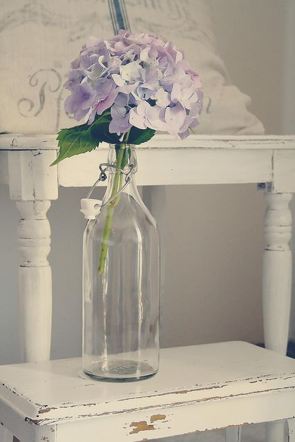 Hydrangea in the bottle by {Frl.Klein}, via Flickr