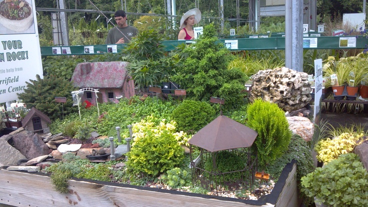 Pin By Carla Garfield On Gardening Pinterest