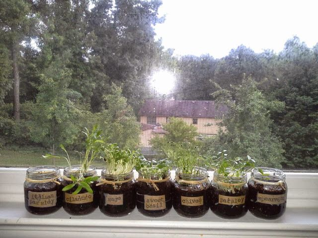 Windowsill Herb Garden  DIY ;0  Pinterest